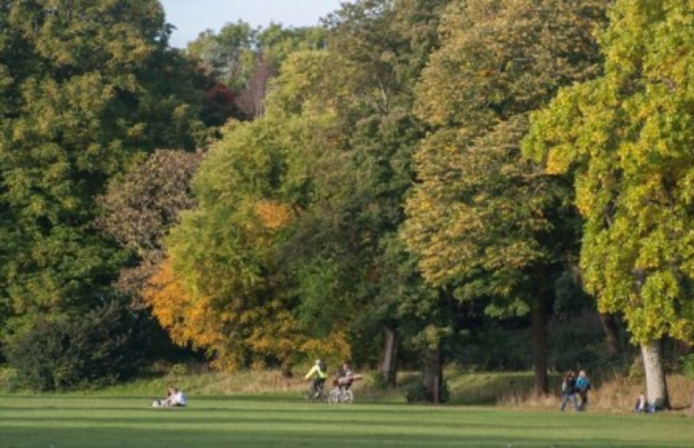 How to get the most of Cardiff in one entertaining day - Bute Park by Jeremy Segrott
