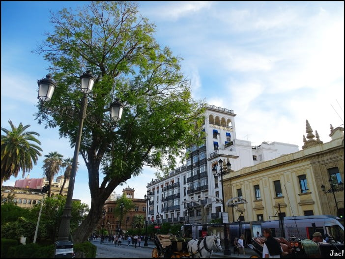 Seville - Constitution Avenue by Jose A